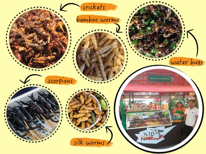 Fried insects | Bangkok bizarre food | Bangkok Food Tours