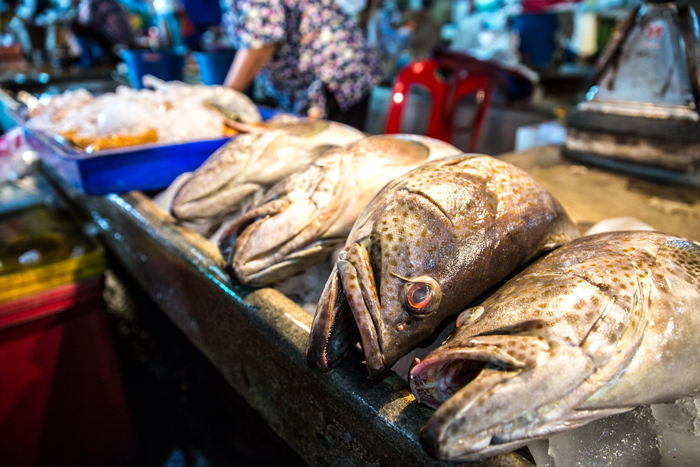 Grouper fish at Mahachai Market | Bangkok fresh markets | Bangkok Food Tours