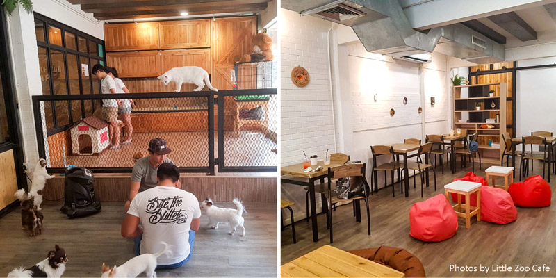Little Zoo Cafe_atmosphere | Instagramable cafes in Bangkok | Bangkok Food Tours